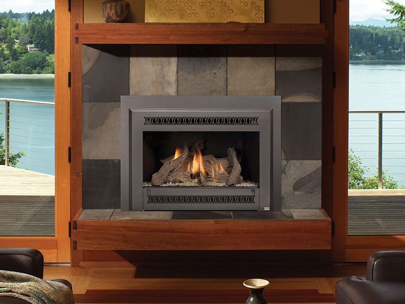 Natural Gas or Propane Fireplace Gas Inserts for your home in Richmond VA | Hearth and Home Shoppe of Mechanicsville in Richmond Virginia