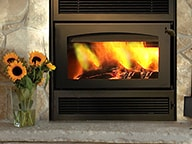 Wood-burning fireplaces   Hearth and Home Shoppe VA